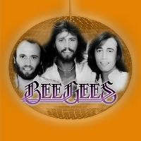 Bee Gees Tribute Band @ Blackburn Hall, Rothwell