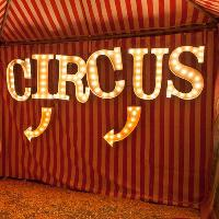 Circus of the Lost
