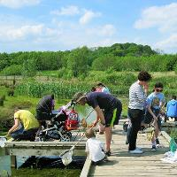 Brockness Monster Weekend - Pond Dipping