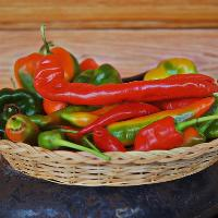 Mexican chillies and moles course