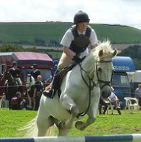 Wanborough Spring Horse & Dog Show