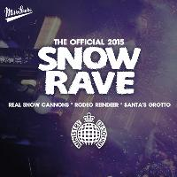 The Ministry of Sound Snow Rave 2k15