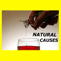 Natural Causes - a dark comedy play written by Eric Chappell