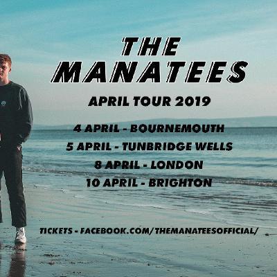 The Manatees