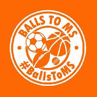 The Balls To MS Charity Dinner