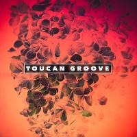 Toucan Groove