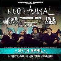 Neon Animal and more