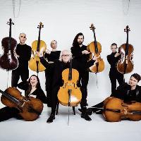 Massive Violins Summer Concert
