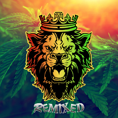 Remixed - Kenny Ken Takes You Into The Jungle
