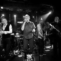 UB40 Tribute Band - Shirley