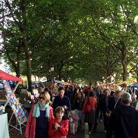 The Level Sunday Market