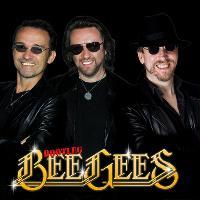 Bootleg Bee Gees - Bee Gees Tribute