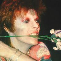 Des Was a Bowie Fan: Edinburgh Special