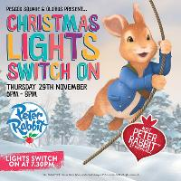 Christmas Lights Switch On Event