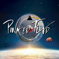 Pinked Floyd Tribute Show