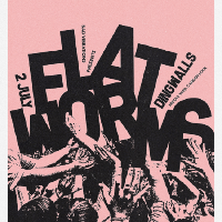 Flat Worms