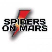 Spiders on Mars - David Bowie Tribute
