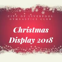 Christmas Display 2018