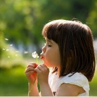 Little Seedlings Club - Wonderful Weeds