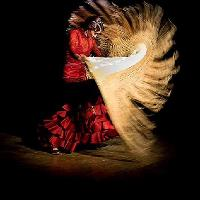 "Flamenco Night at Jamboree: Presenting ""El trio Flamenco"""