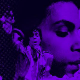 Princes Purple Disco Live in the Park