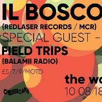 Cheesecake w/ Il Bosco, Field Trips & More
