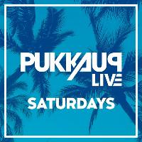 Pukka Up Ibiza Saturdays