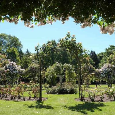Club Classics Garden Party Bantock Park + Afterparty Grainstore