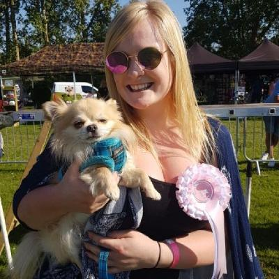 All About Dogs Show Essex