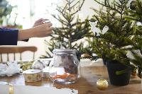 FREE Treetorial- Christmas Tree Interior Designing Consultation