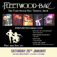 Fleetwood Bac: Fleetwood Mac Tribute Band Live