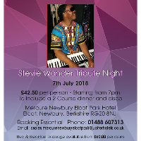 Stevie Wonder Tribute Night