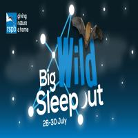 Roundhouse Big Wild Sleep Out - at RSPB Aylesbeare nature reserve