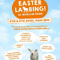 Easter Lambing at Whirlow Hall Farm