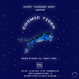 Cosmic Tiger: House, Disco, R&B, Charts All Night Long