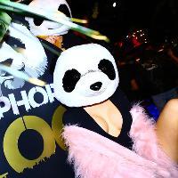 Paradise Presents… Hip Hop Zoo