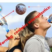 Our Plastic Bodies