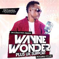 Wayne Wonder Live