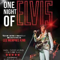 One Night of Elvis starring Lee Memphis King