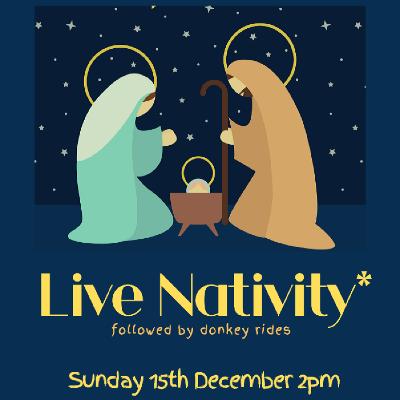 Live Nativity with Donkey Rides