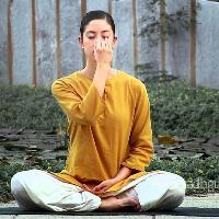 Free Yoga Session (Upa Yoga)