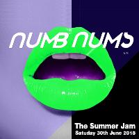 Numb Nums