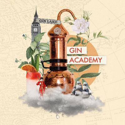 Reviews: Gin Masterclass   Revolution Birmingham   Thu 25th July 2019