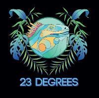 23 Degrees Presents Dismantle