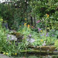 Bramfield Open Gardens