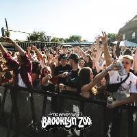 Brooklyn Zoo // Bristol