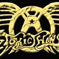TOXIC TWINS (Aerosmith Tribute) / SUPPORT TBA