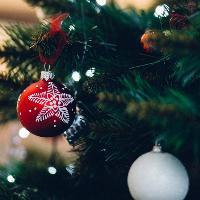 Gut-friendly Christmas Dinner Talk