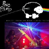 The Welsh Pinc Ffloyd Show