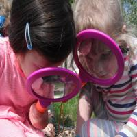 Nature Tots at the HIVE